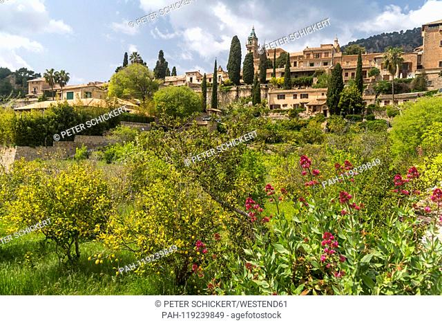 Spain, Balearic Islands, Majorca, Valldemossa, townscape | usage worldwide, No third party sales. - Valldemossa/Spain
