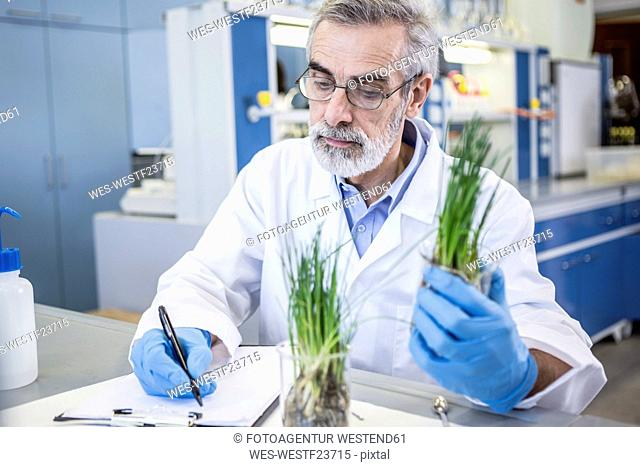 Scientist in lab examiming plant and taking notes