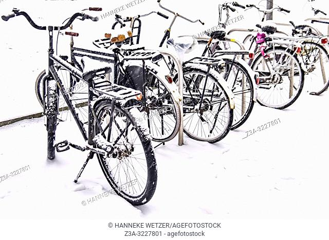 Snowed under bicycles in Eindhoven, The Netherlands, Europe