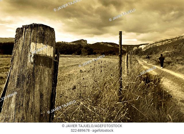 Landscape. Burgos province, Castilla-Leon, Spain