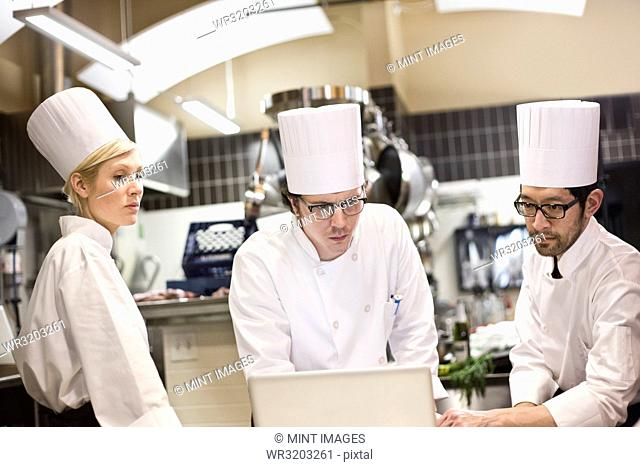 A mixed race group of chefs working with a laptop computer in a commercial kitchen