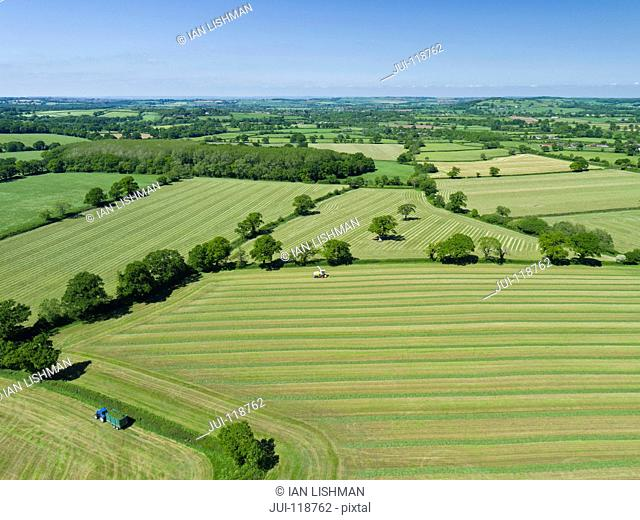 Aerial view of summer grass silage fields being harvested, farmland and country landscape