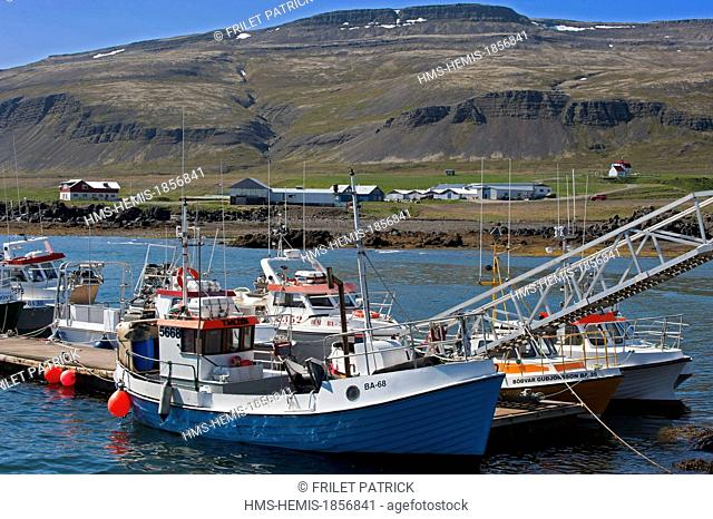 Iceland, Westfjords, Vestfirdir Region, Breidafjordur Bay, Brjanslaekur fishing harbour
