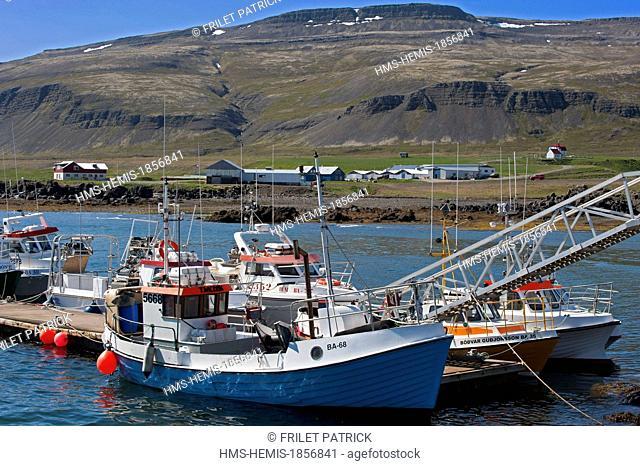 Iceland, Westfjords, Vestfirdir Region, Breidafjordur Bay, Brjanslaekur fishing harbour