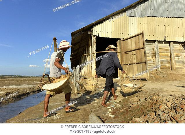 Workers extracting salt near Kampot, Cambodia, South East Asia, Asia