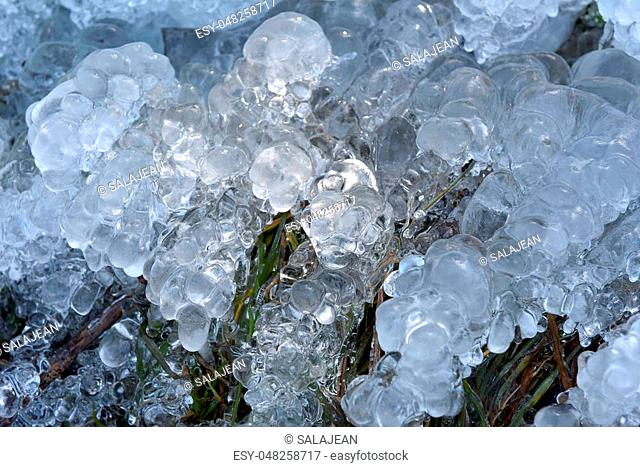 Abstract ice crystals on frozen plants at winter