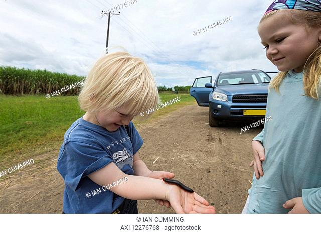 Young boy being tickled with Giant African Millipede (Archispirostreptus gigas) crawling on his arm; Malawi