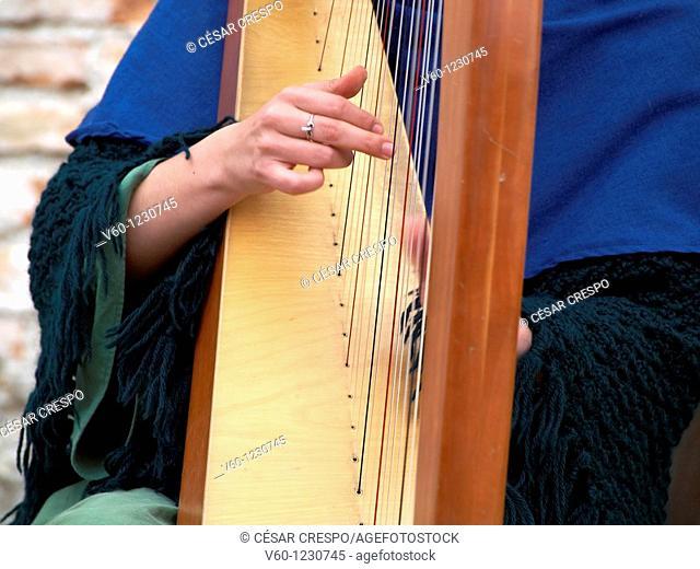 -Woman Playing Harp- Wien (Austria)
