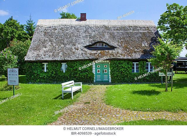 Grassed museum, thatched cottage, Gingst, Rügen, Mecklenburg-Western Pomerania, Germany