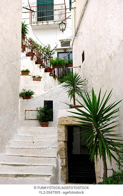 The alleys and narrow streets of the white city of Ostuni, Puglia, South Italy