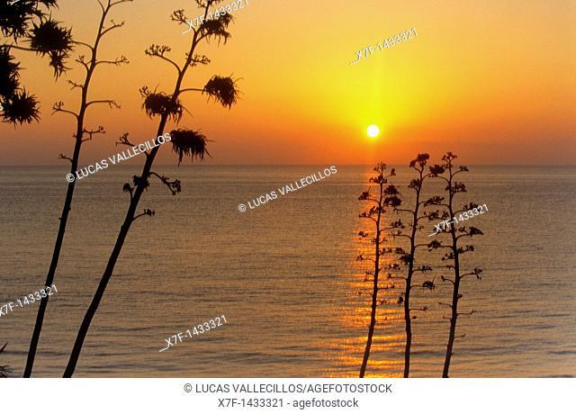 San José Beach of San José Cabo de Gata-Nijar Natural Park  Biosphere Reserve, Almeria province, Andalucia, Spain