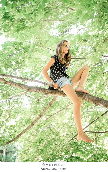 A young girl in shorts sitting on a high tree branch under a canopy of green leaves