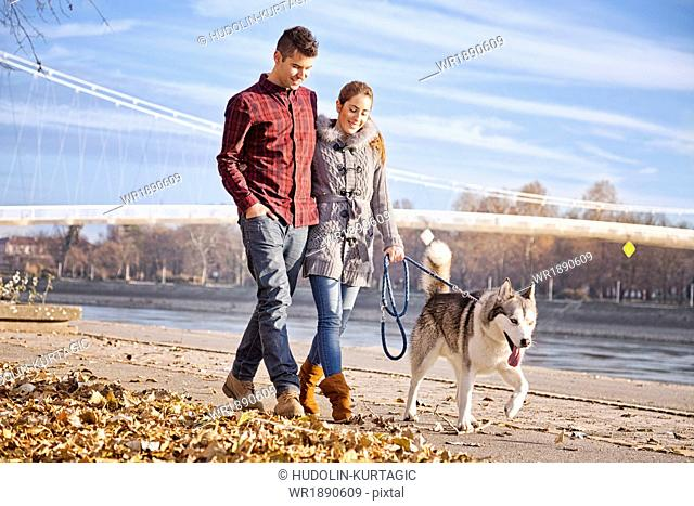Couple Walking Dog Outdoors, Croatia