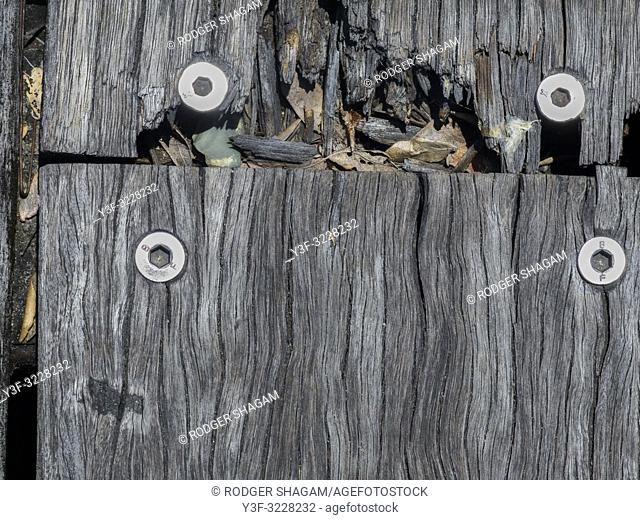 Piece of an old boarwalk or fishing jetty. Showing the errosion of the wood over many years. held together with modern bolts and fasteners. Australia
