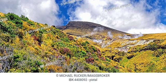 Smoke and steam plume at the Ketetahi Springs on volcanically active northern slope of Mount Tongariro, Tongariro National Park, Manawatu-Wanganui, North Island