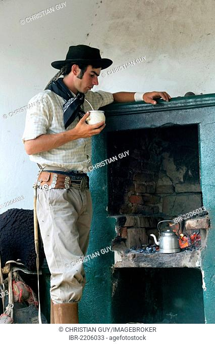 Gaucho drinking mate tea, Estancia San Isidro del Llano towards Carmen Casares, Buenos Aires province, Argentina, South America