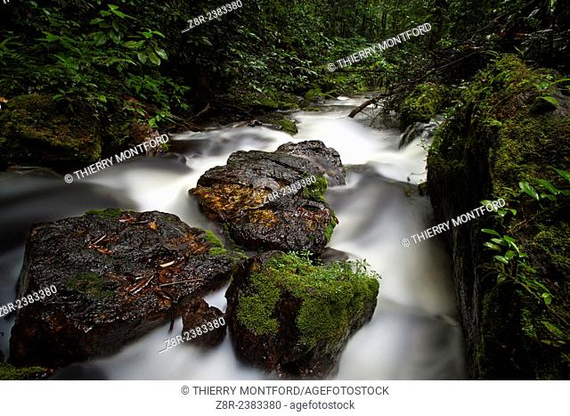 Little river with rapids Diamond Creek on the Kaw mountain. French Guiana