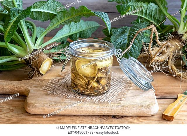 Preparation of alcohol tincture from wild teasel root - a folk remedy for lyme disease
