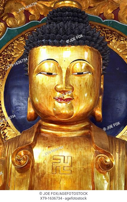 head face and shoulders of large golden buddha statue showing buddhist swastika symbol in po fook hill cemetery sha tin new territories hong kong hksar china...
