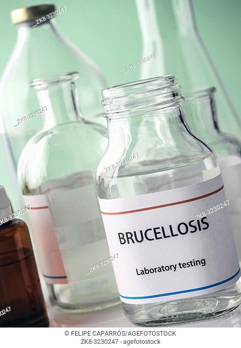 Test brucellosis in laboratory, conceptual image, composition horizontal