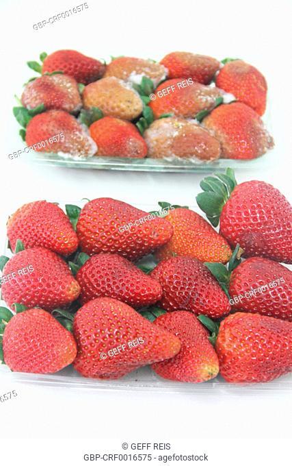 Strawberry, fruit, São Paulo, Brazil