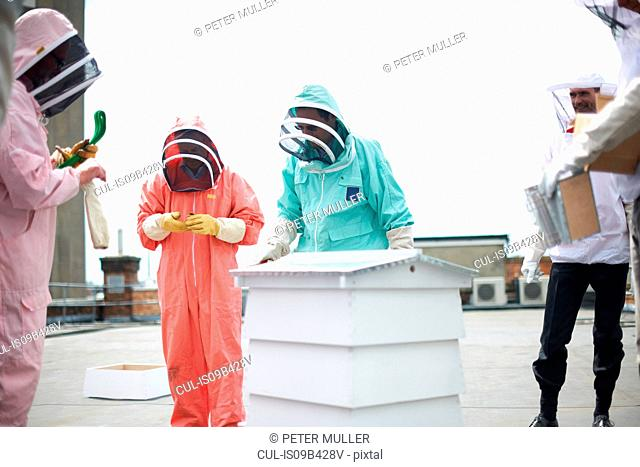 Group of beekeepers inspecting hive