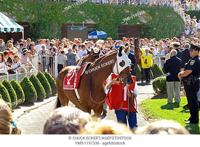 Paddock parade prior to the annual Arlington Park Million horse race
