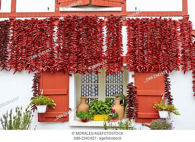 France,Pyrenees Atlantiques,Basque Country,Espelette,bunch of peppers drying in the sun on the facade of a traditional Basque house