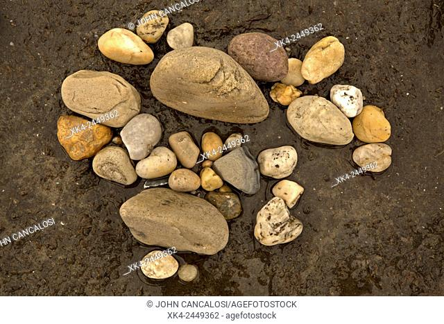 Rocks on beach, Delaware bay, Delaware, USA