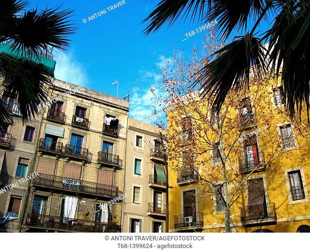 Buildings, El Raval neighbourhood, Barcelona, Catalonia, Spain