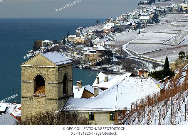 Onset of winter in the UNESCO World Heritage site Lavaux at Lake Geneva, Lac Leman, between the municipalities of Saint-Saphorin and Rivaz