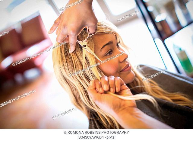 Stylist cutting woman's hair in hair salon