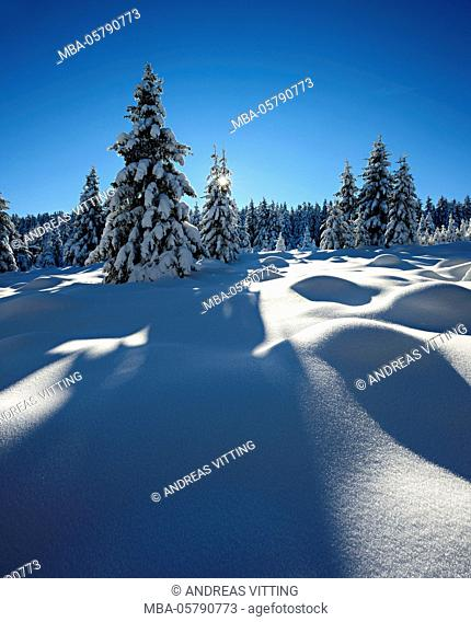 Snow-covered pristine winter landscape in the Harz National Park, near Schierke, Saxony-Anhalt, Germany