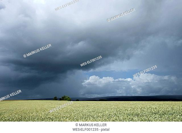 Germany, Constance district, stormy atmosphere over Black Forest