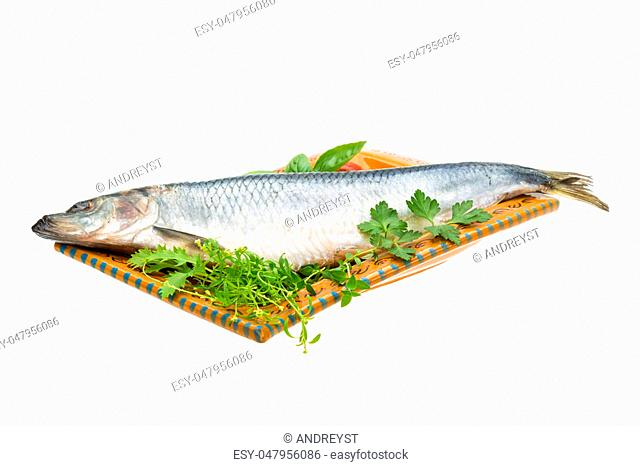Marinated herring with herbs