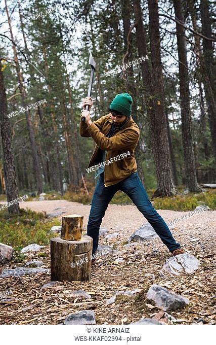 Man chopping wood in rural landscape
