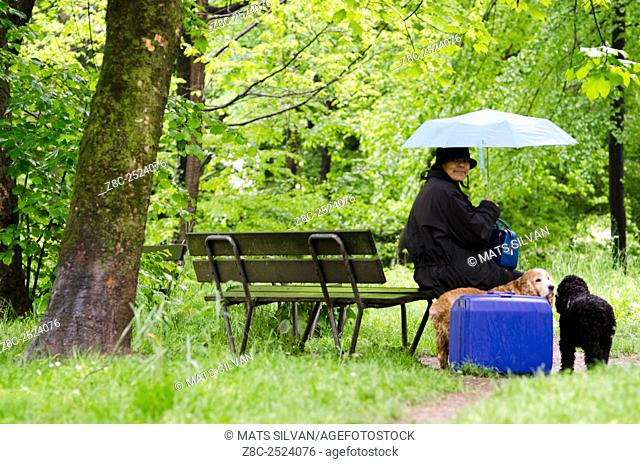 Woman with a blue umbrella sitting on a wet bench in the green forest with grass and two cocker spaniel dogs with her suitcase in Locarno, Switzerland