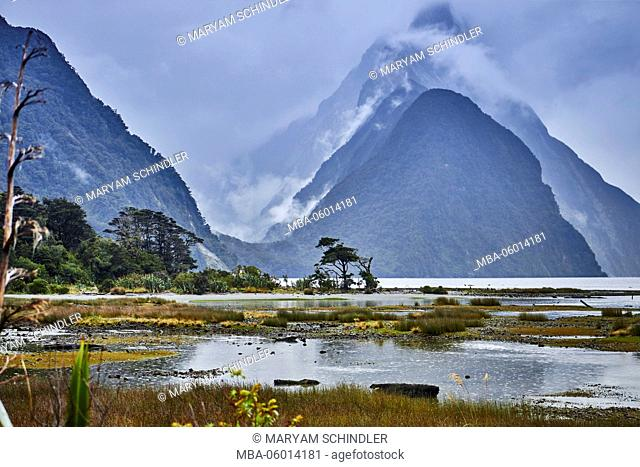 New Zealand, south island, Milford sound, mountains in cloud cover