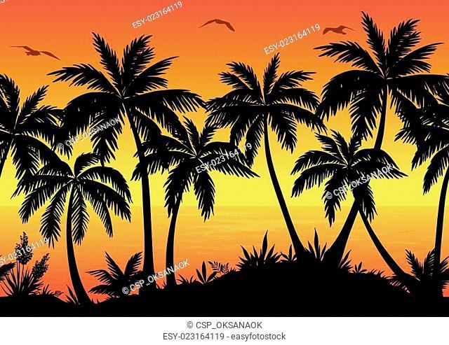 Seamless Landscape, Palms, Ocean and Birds