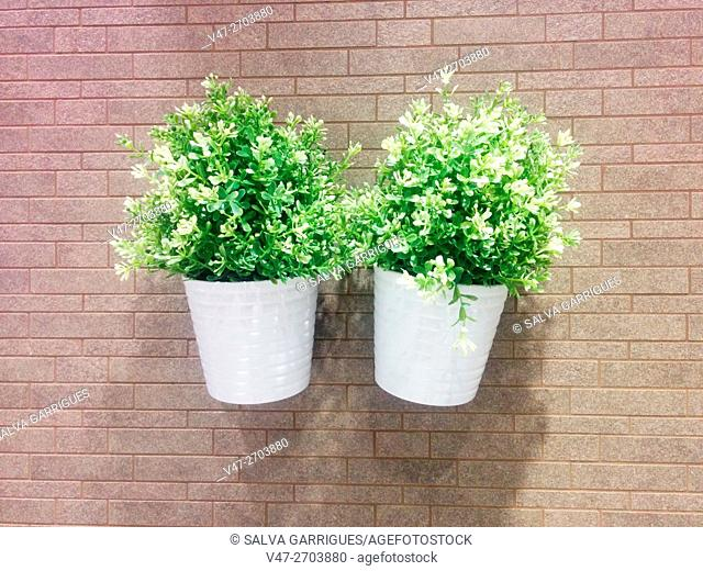 Two pots with plastic plants hanging on a wall