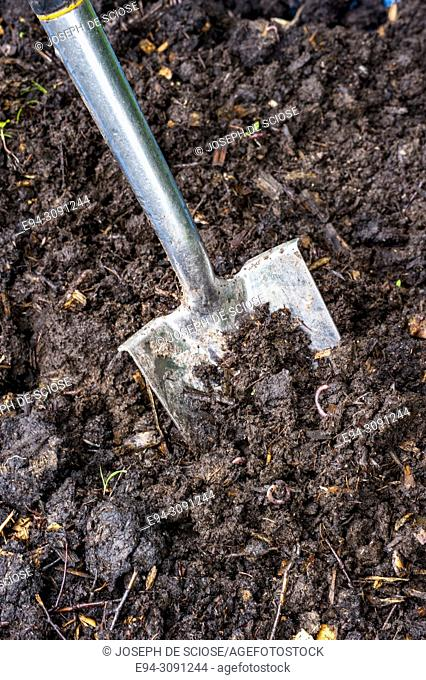 Close-up of a shovel digging in good quality garden soil