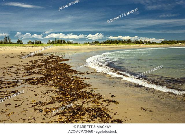 Provincial park nova scotia canada Stock Photos and Images | age
