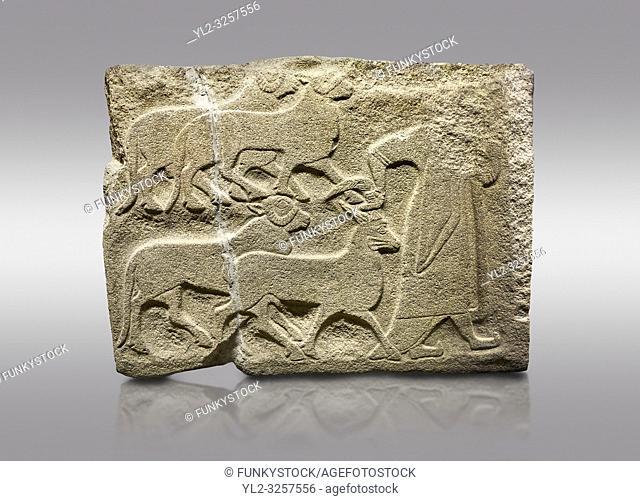 Alaca Hoyuk Sphinx Gate Hittite monumental relief sculpted orthostat stone panel. A figure bringing sacrificial animals. Anatolian Civilizations Museum, Ankara