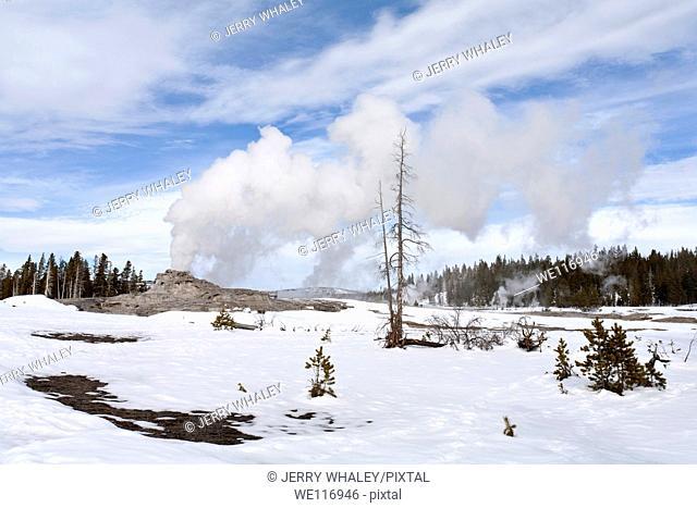 Castle Geyser, Yellowstone NP, WY