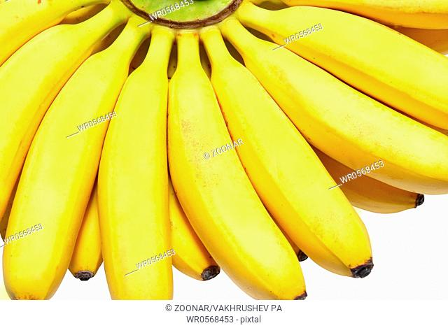 Butch of small bananas