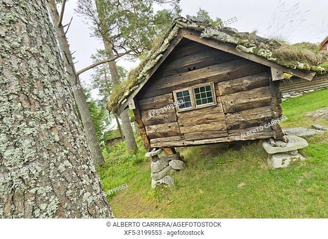 Open-air Museum, Sunnmore Museum, Alesund, Norway, Scandinavia, Europe
