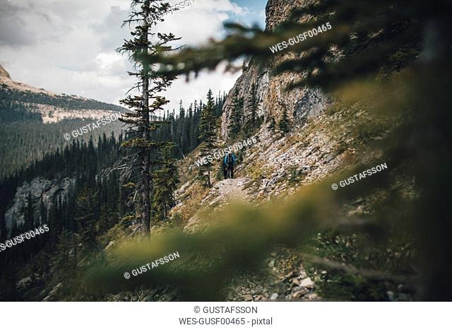 Canada, British Columbia, Yoho National Park, two men hiking at Mount Burgess