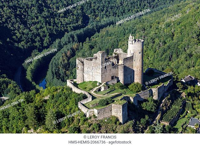 France, Aveyron, Najac, labelled Les Plus Beaux Villages de France (The Most beautiful Villages of France), the castle (aerial view)