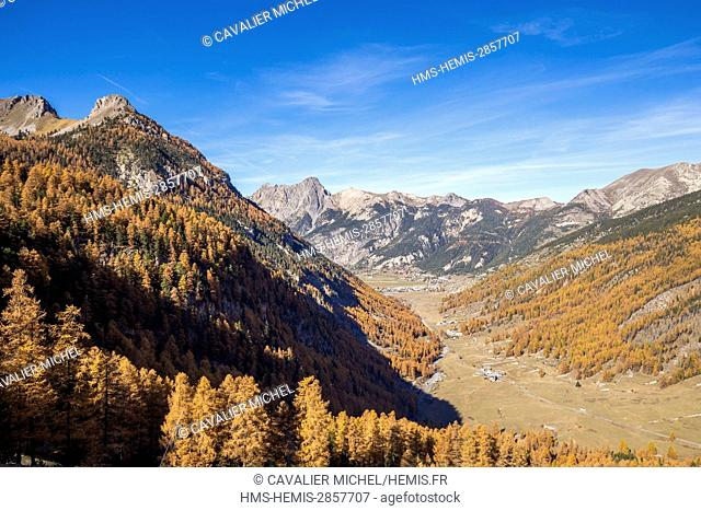 France, Hautes Alpes, regional natural reserve of Queyras, valley of the village of Ceillac