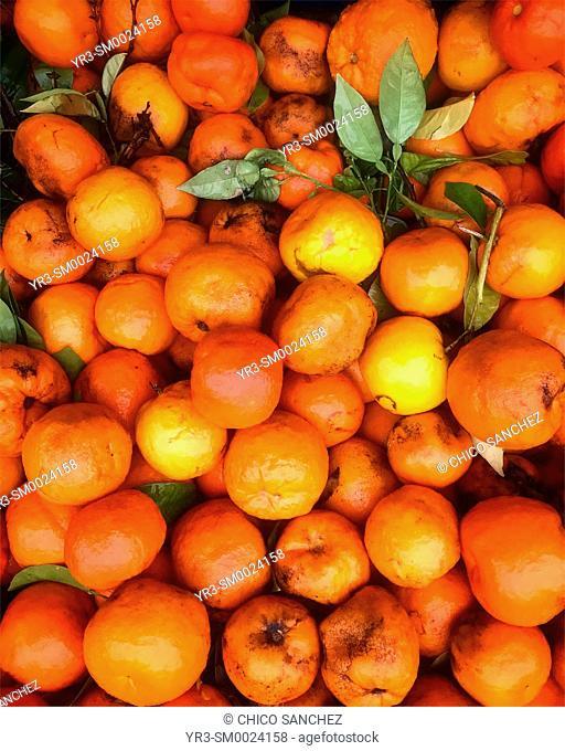Oranges in a market in Prado del Rey, Sierra de Cadiz, Andalusia, Spain